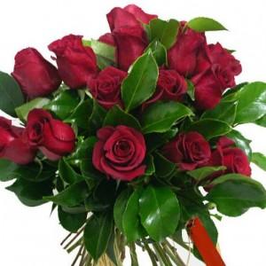 Solo Rosas